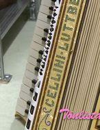 Á yfir 180 harmonikur