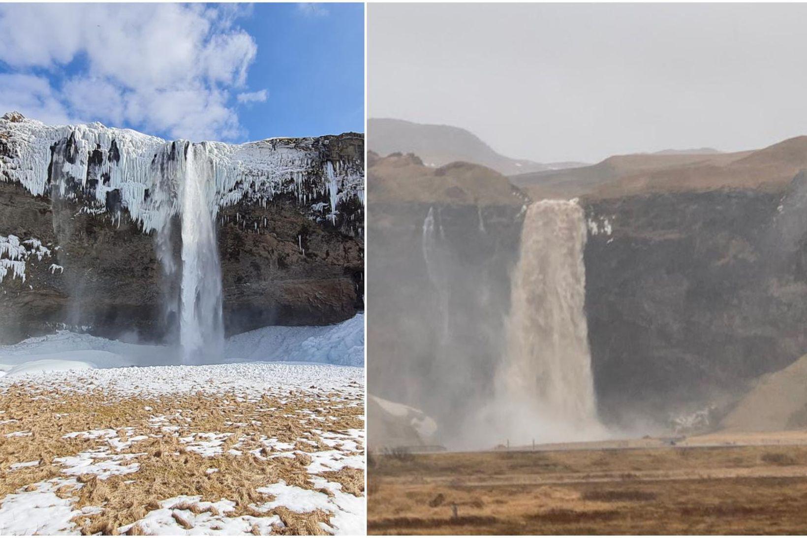 Seljalandsfoss hefur breyst töluvert í kjölfar mikillar úrkomu.