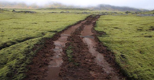 Djúp för og tættur mosi liggja eftir utanvegaakstur á Reykjanesskaga.