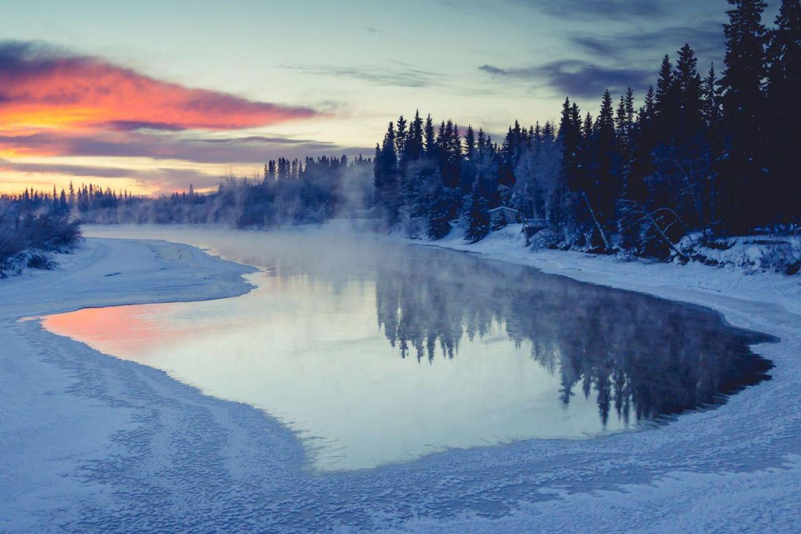 Ferðamenn sem koma til Alaska í Bandaríkjunum í sumar geta …