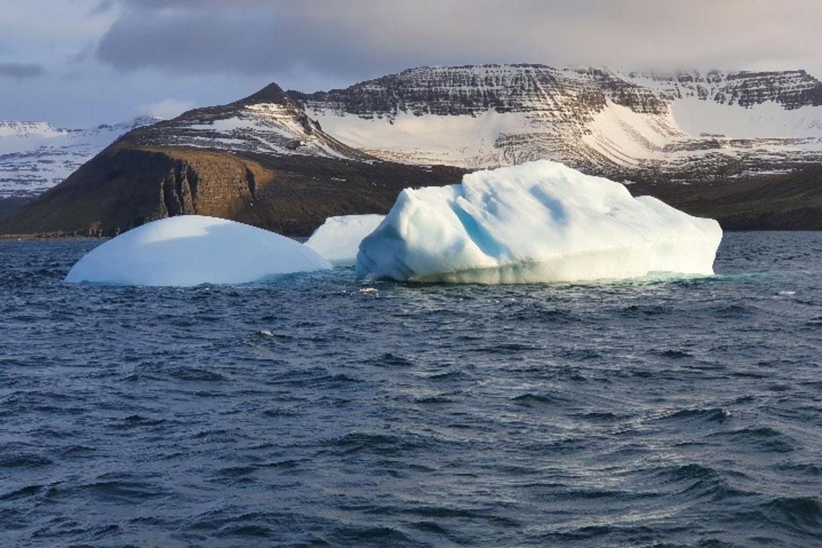 Borgarísjaki við Hornvík á Hornströndum.