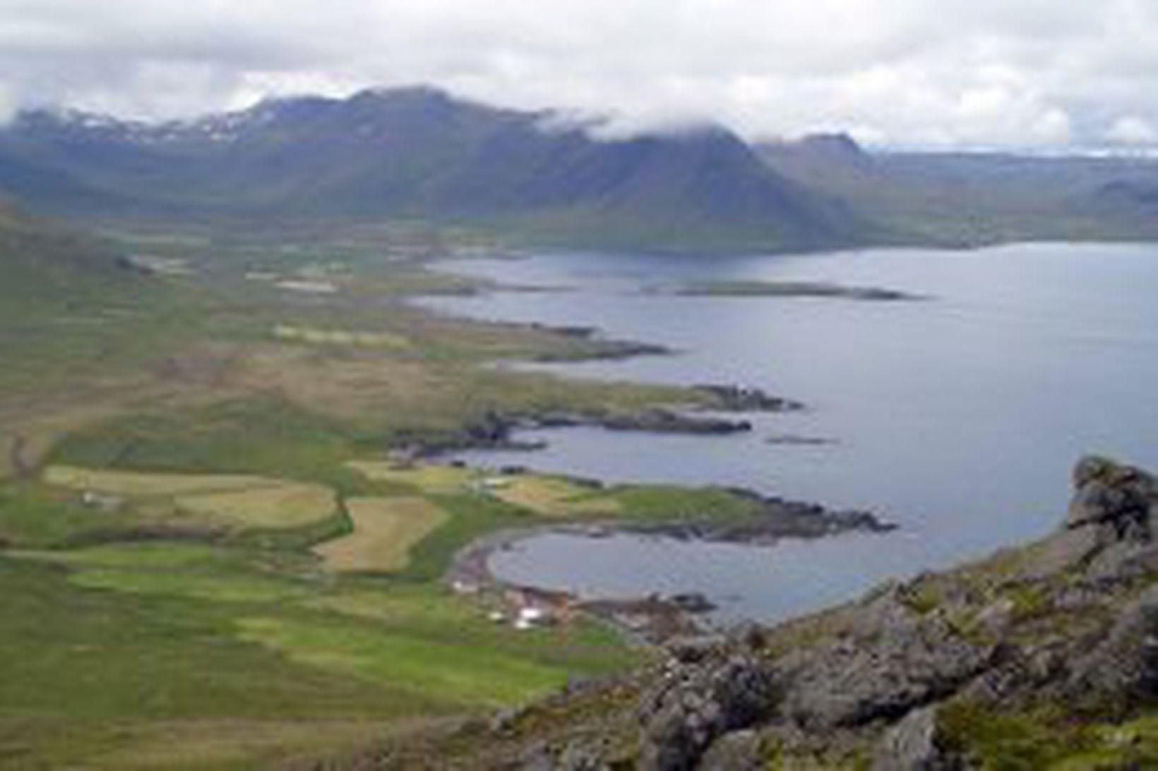 Séð yfir Trékyllisvík í Árneshreppi.