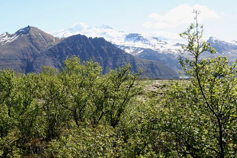 From Vatnajökull National Park.
