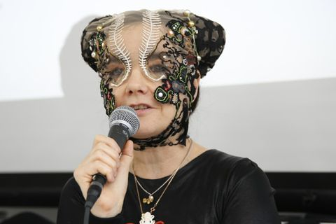 Björk says Iceland has a deadline and harshly criticizes the Icelandic Government for destroying Iceland's nature.