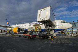 Breiðþotan sem notuð var til flugsins er ein fjögurra slíkra í flota Icelandair. Þær eru …