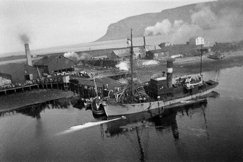 Haug I tók þátt í hvalveiðunum og kom með dýrin til hvalveiðistöðvarinnar á Suðureyri og …