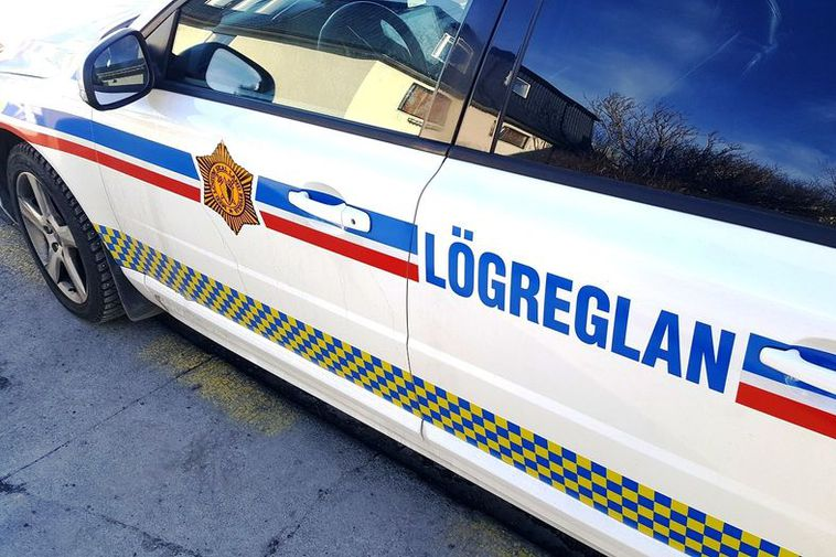 Police in Reykjavik have to deal with all kinds of bizarre things.