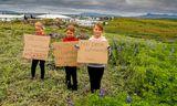 Birta Ísey Sigurðardóttir, Katrín Lísa Helgadóttir. og Fanney Lilja Sigurðardóttir mótmæla slætti Kópavogsbæjar á lúpínunni.