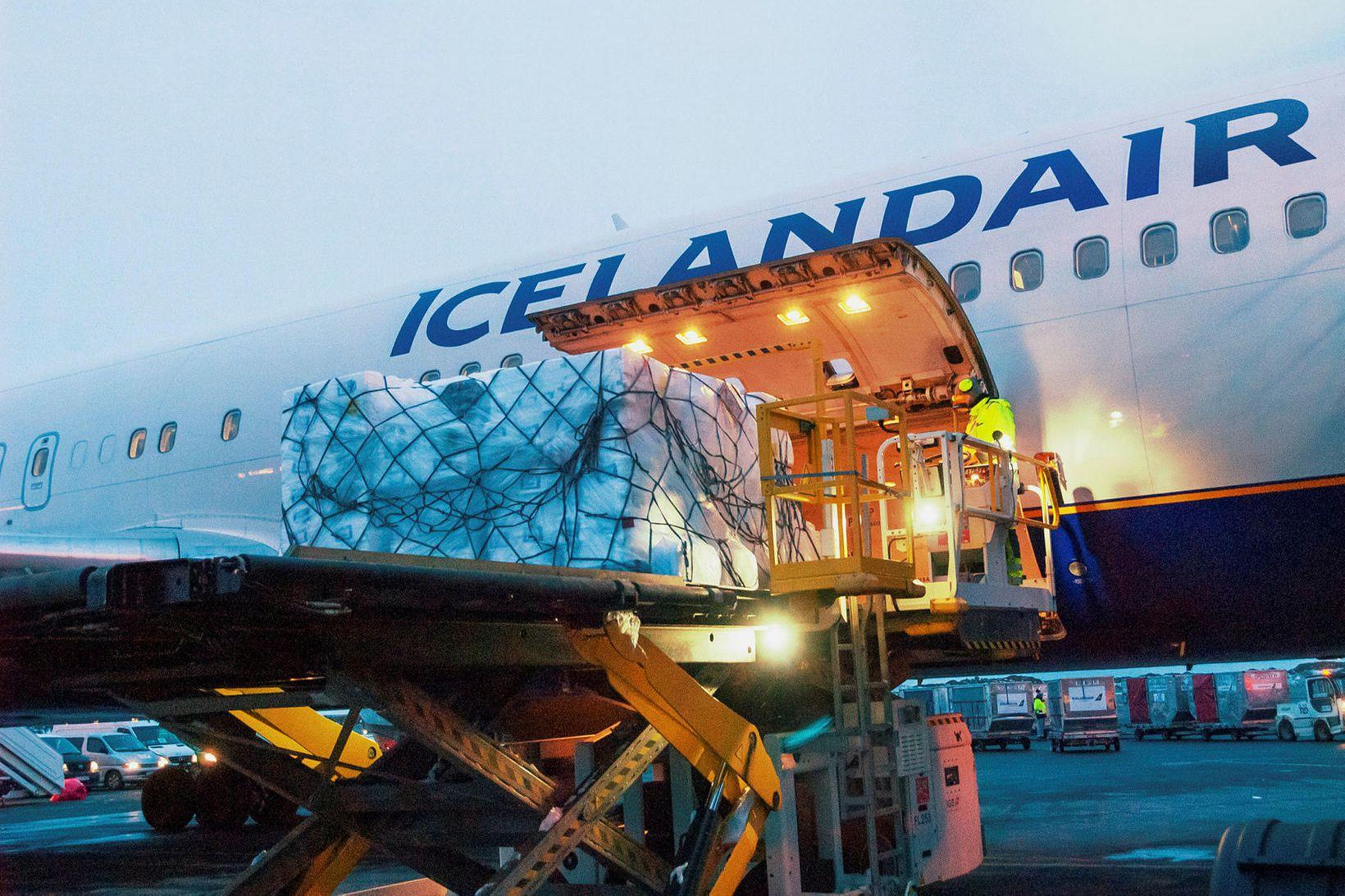 Flutningaþota Icelandair hlaðin á Keflavíkurflugvelli.