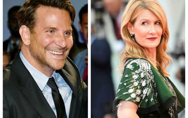 Bradley Cooper og Laura Dern eru bara vinir.