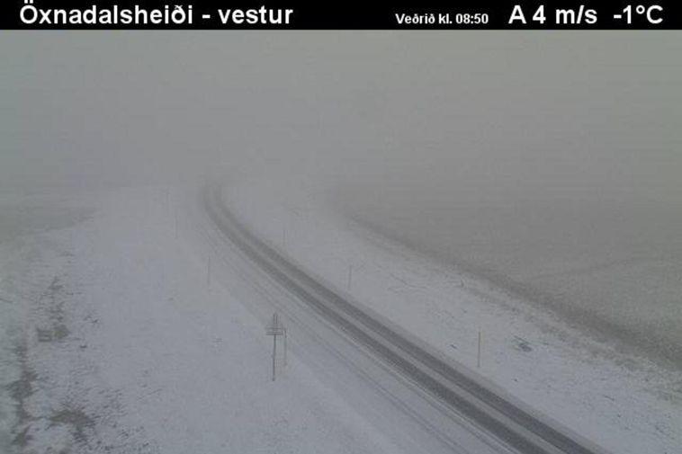 From Öxnadalsheiði mountain pass this morning.
