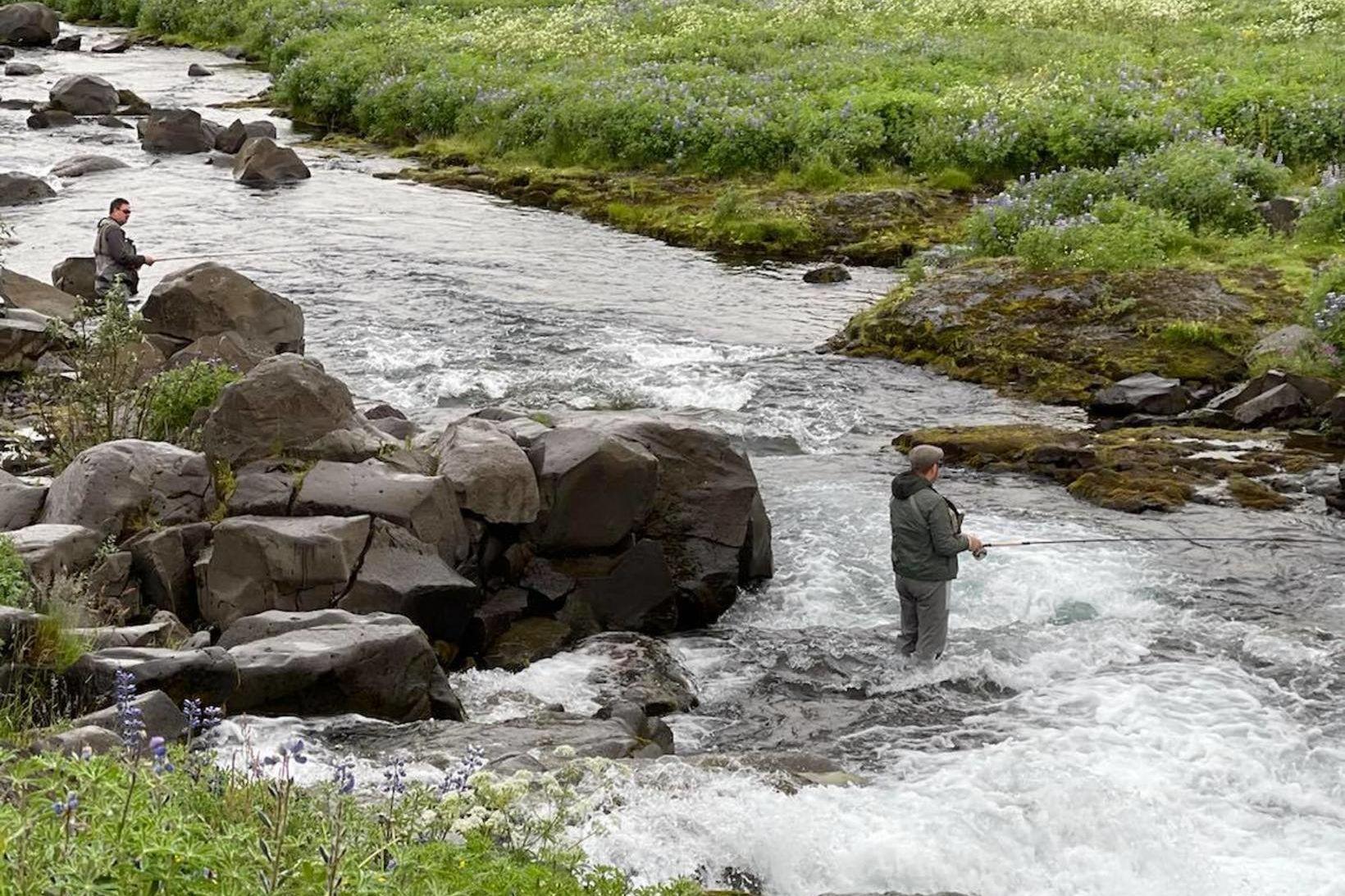 Tvíburarnir, Gunnar og Magnús Geir veiða Leirvogsána í gær. Tóku …
