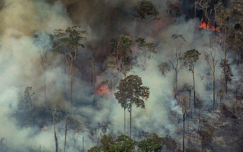 Gróðureldarnir eru gegndarlausir í Amazon-regnskógunum.