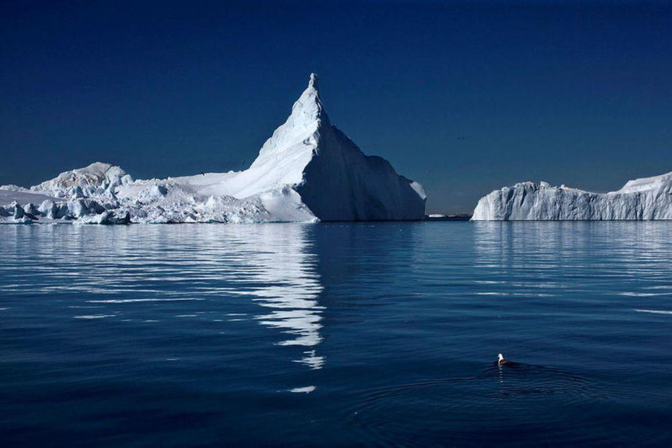 Ísjakar í Ilulissat-ísfirðinum, sem tekinn var á heimsminjaskrá UNESCO árið ...