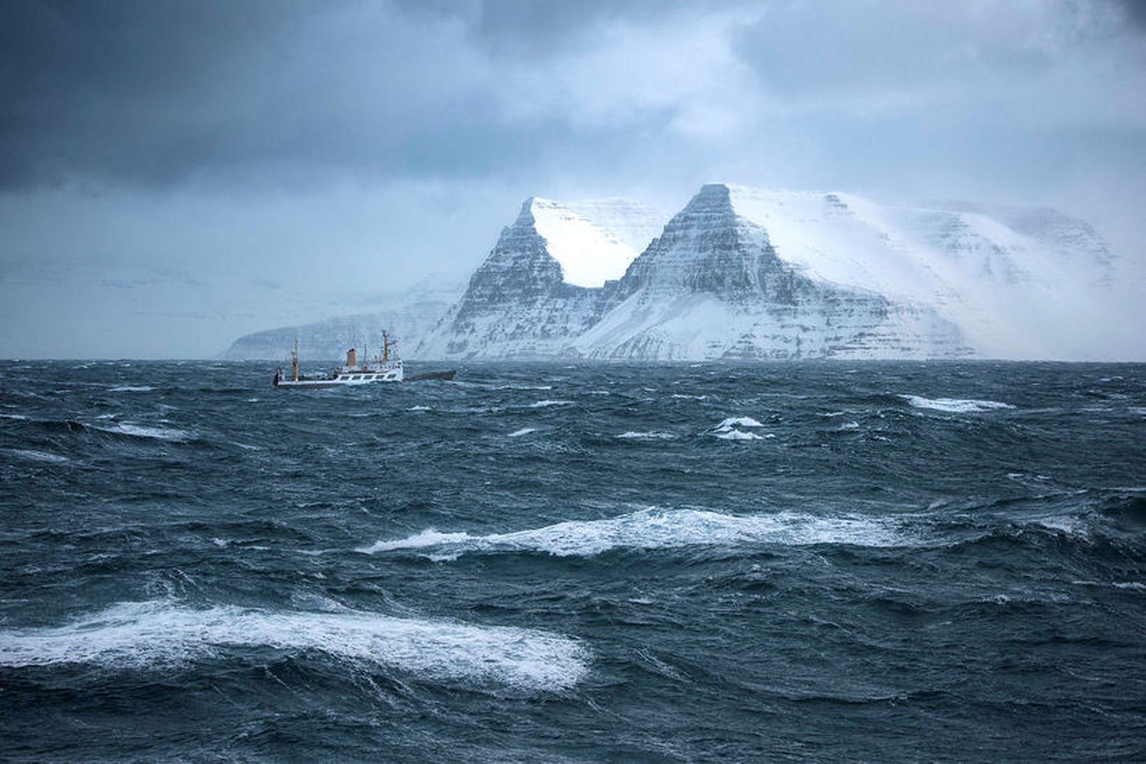 Hafrannsóknaskipið Bjarni Sæmundsson siglir í var á Ísafjarðardjúpi. Mynd úr …