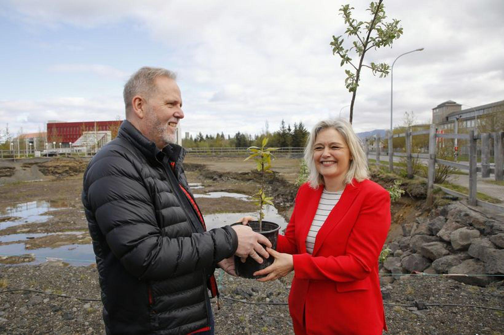 Guðrún Nordal afhendir Jóhannesi Benediktssyni, formanni Skógræktarfélagi Reykjavíkur, trjáplöntu.