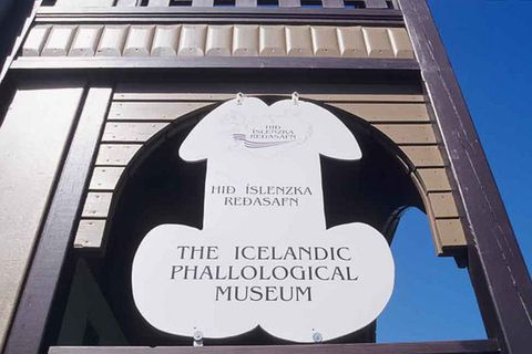 One of Reykjavik's stranger tourist attractions.