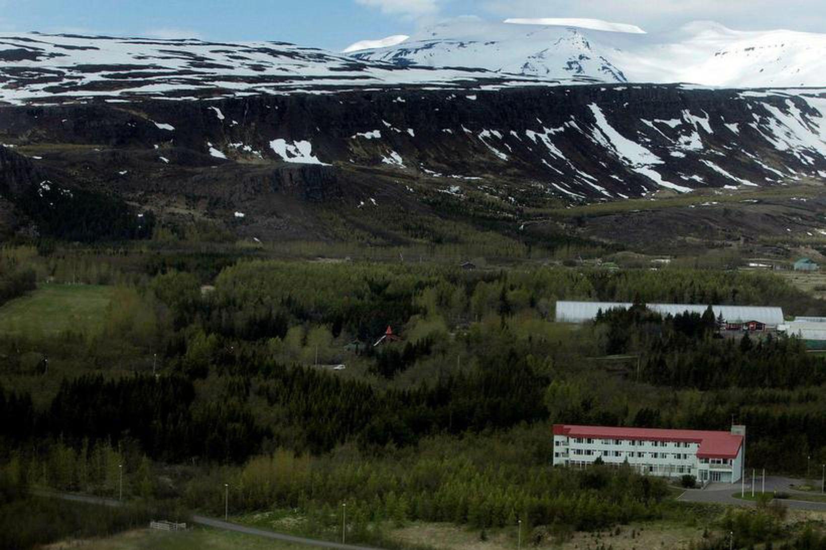 Kjarnaskógur á Akureyri.