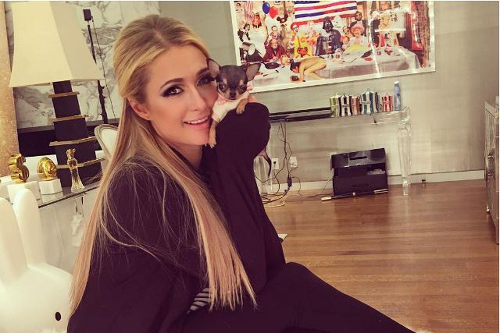 Paris Hilton með nýjasta tebolla-hundinn sinn.