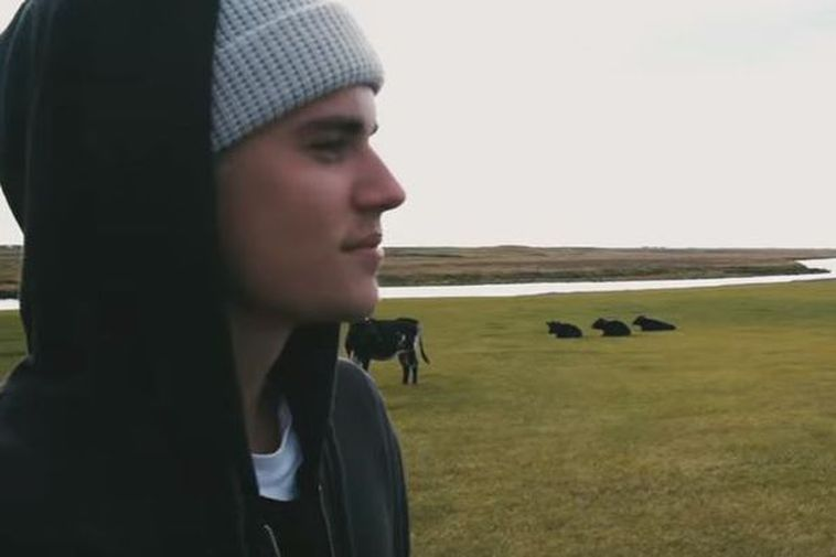 Justin Bieber with Icelandic cows in the background.