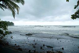 Frá eyjunni Guadeloupe fyrr í dag.