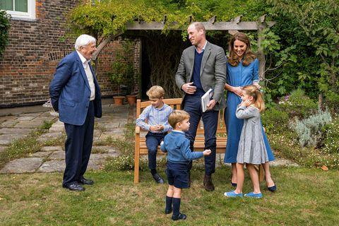Allir voru í sömu litapallettunni þegar Sir David Attenborough kom í heimsókn.