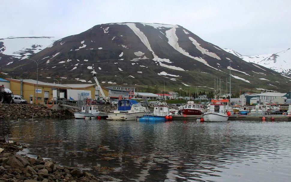 Það sem olli því þó að fyrirtækið skilaði hagnaði voru ...