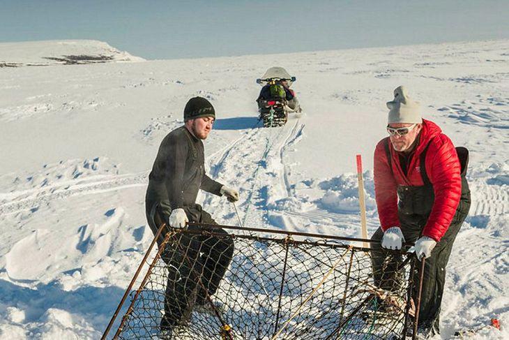 Sjómenn í bænum Nome, vestarlega í Alaska, draga krabba upp ...