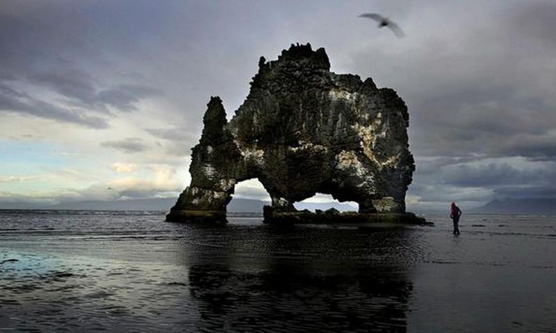 Hvítserkur is a basalt stack with a peculiar shape, it stands on the beach by Vatnsnes peninsula.