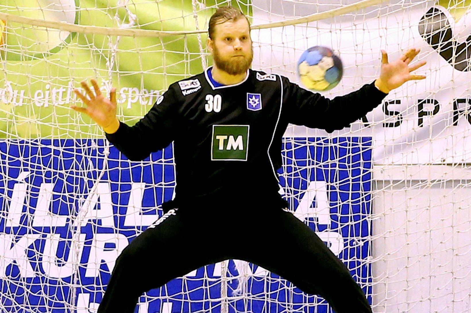 Sveinbjörn Pétursson, markvörður Aue.