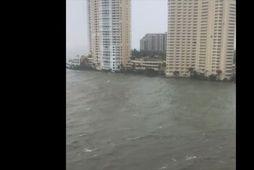 Myndi ekki vilja vera í Miami
