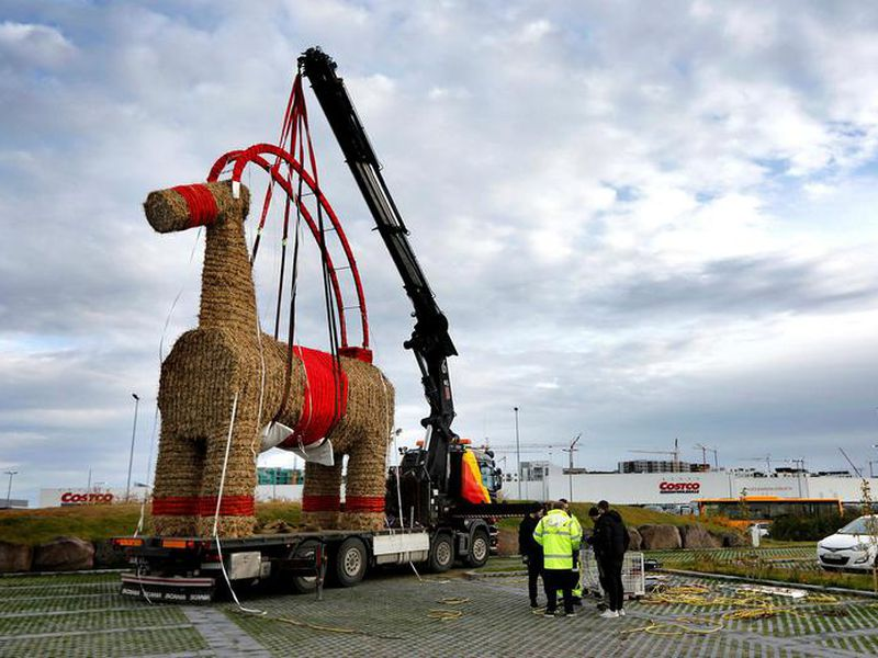 The IKEA goat is the first sign of Christmas in Iceland.