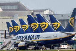 Ryanair hefur flug að nýju 1. júlí.