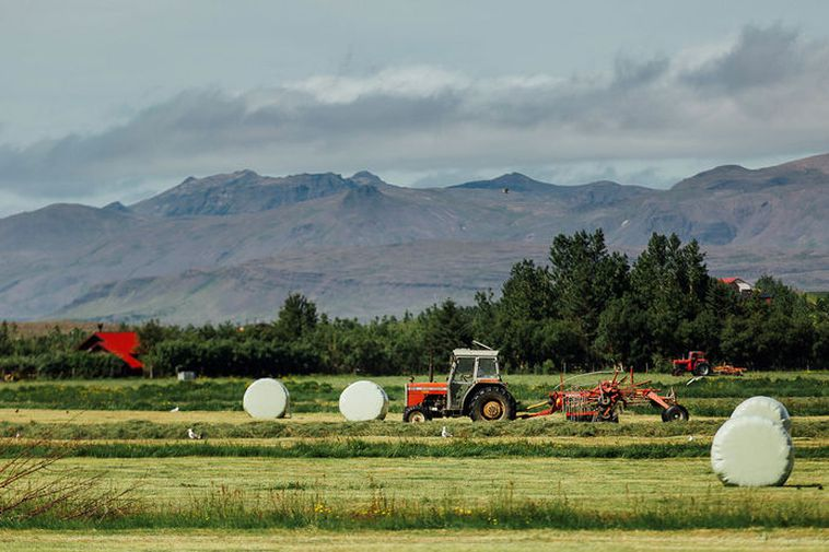Severe drought in Norway has created need for hay from Iceland.