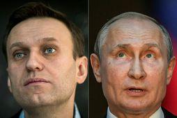 Alexei Navalní og Vladimín Pútín hafa lengi eldað grátt silfur.