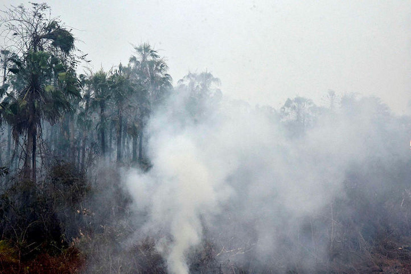 Óvenjumargir gróðureldar loga nú í Brasilíu, flestir þeirra í Amazon.
