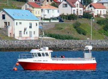 Sæljómi BA-059