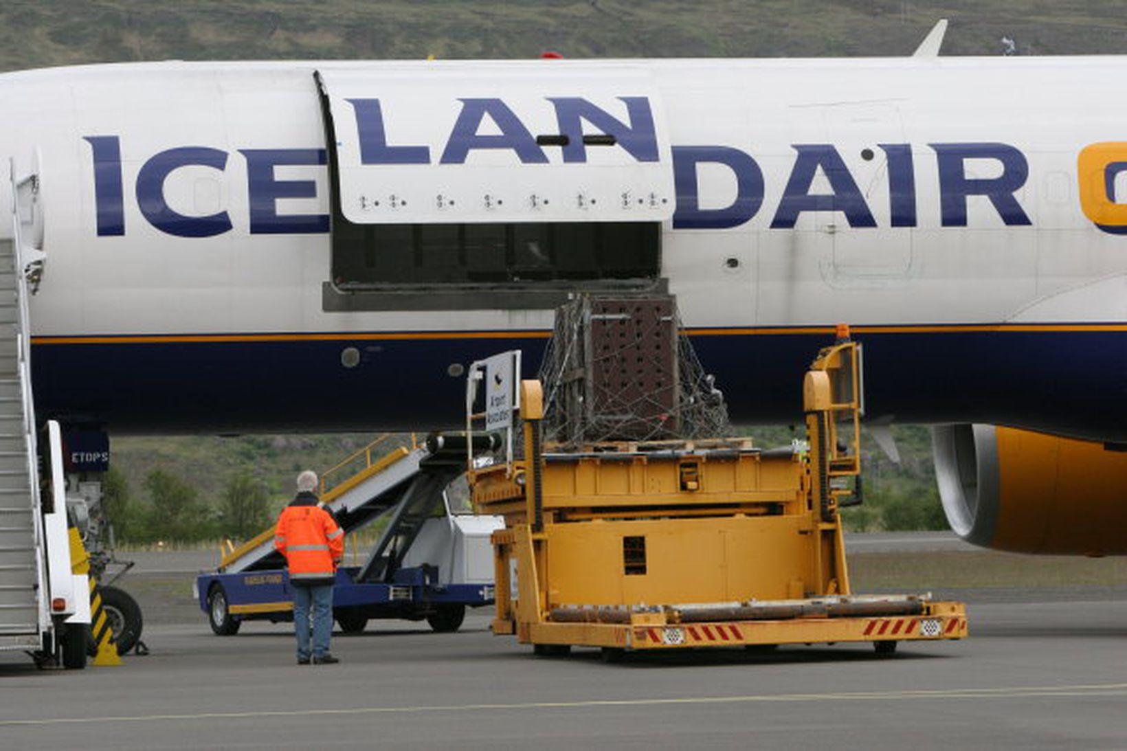 Búrið, sem dýrið verður sett í, flutt úr vél Icelandair …
