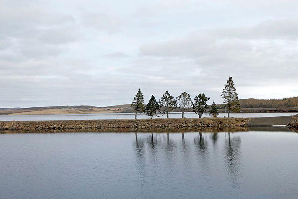 Íbúar Borgarfjarðarhrepps, Djúpavogshrepps, Fljótsdalshéraðs og Seyðisfjarðarkaupstaðar munu á laugardag greiða ...