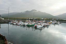 Hluti strandveiðibátanna sem gerður var út frá Skagaströnd í sumar bíður nýrra verkefna á nýju …