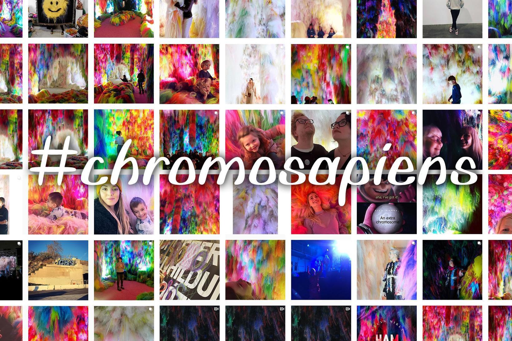Er Chromo Sapiens Instagram-vænsta listasýning Íslandssögunnar?