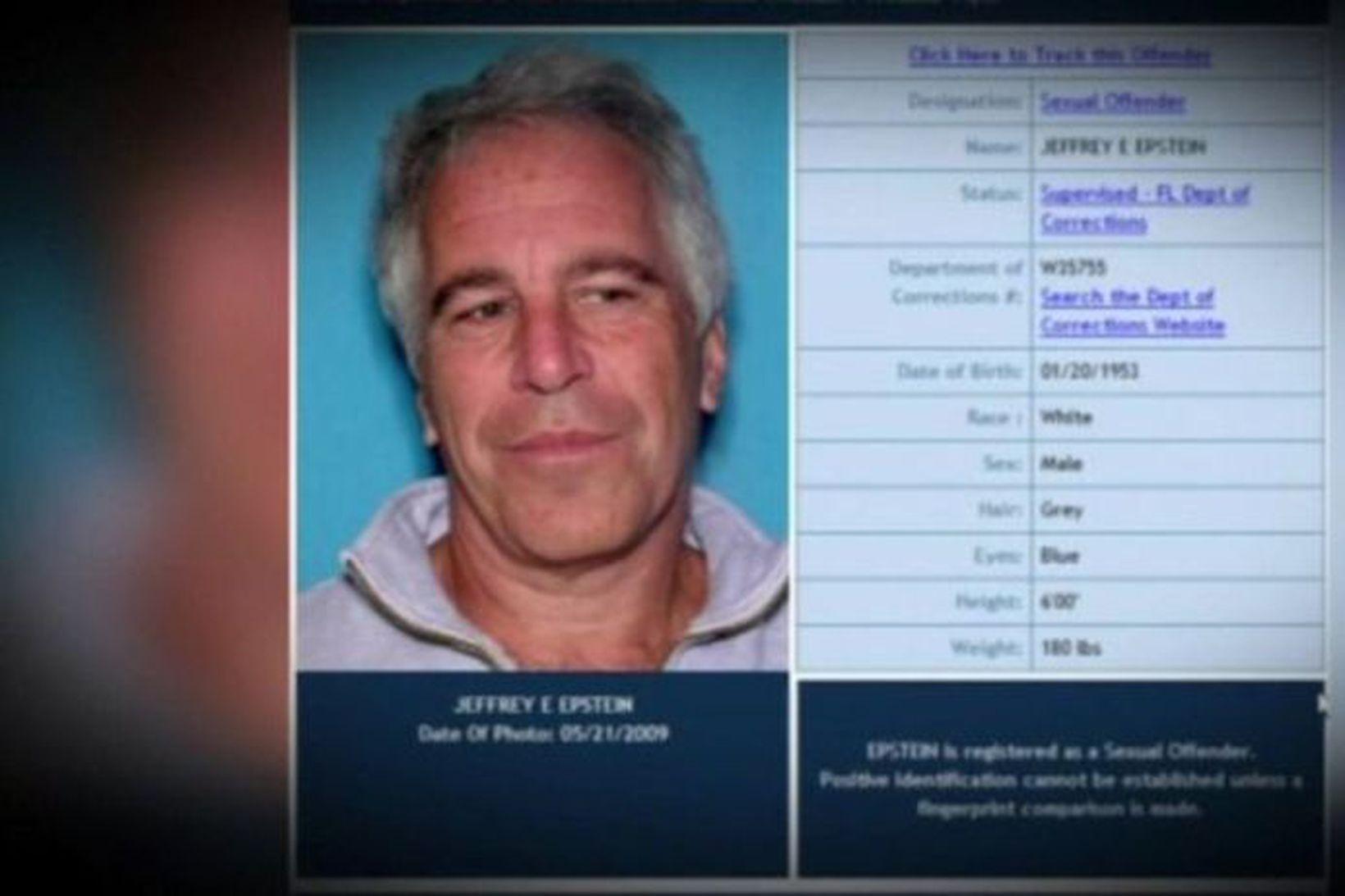 Mynd af Epstein úr gagnagrunni lögreglunnar í Flórída.