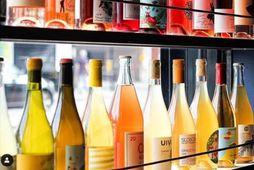 Í London hefur bar opnað, sem geymir appelsínugultóna vín á matseðlinum.