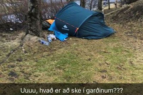 A snapchat image of the tent pitched up next to the bird feeder in the garden in Árbær, Reykjavik.