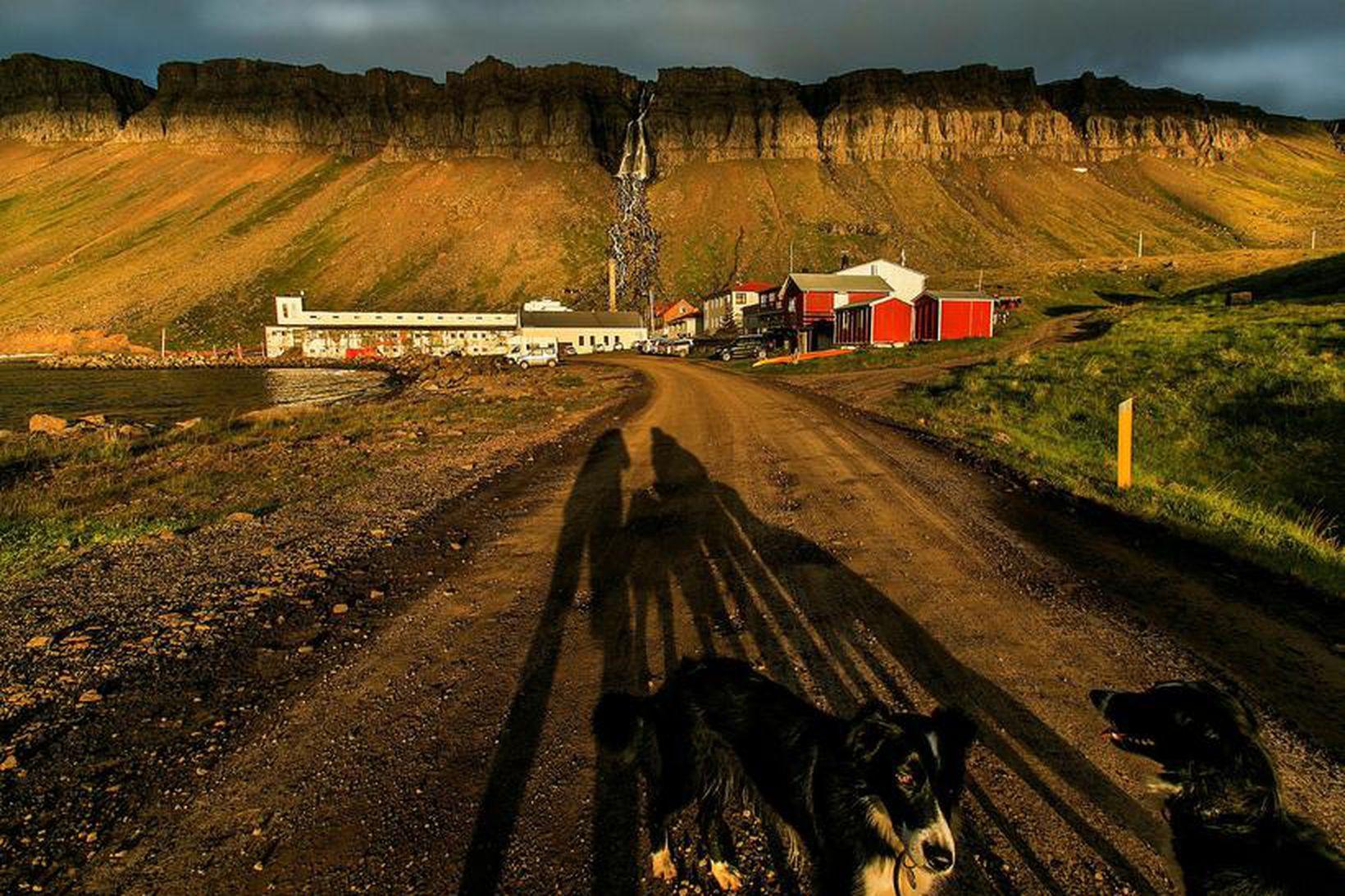 Djúpavík í kvöldsól