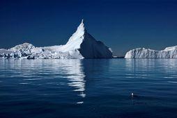 Ísjakar í Ilulissat-ísfirðinum, sem tekinn var á heimsminjaskrá UNESCO árið 2004.