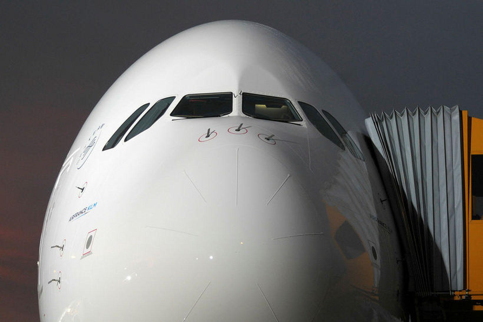 Þota af gerðinni Airbus.