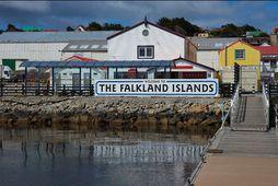 Falklandseyjar eru í Suður-Atlantshafi, við strendur Argentínu.
