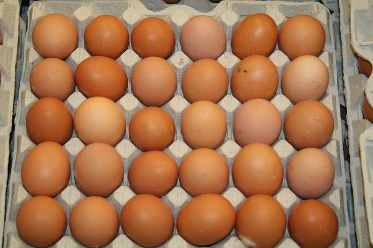 Emma borðaði um 21 egg á viku.