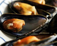 Icelandic mussels are a delicacy but currently no mussels from Hvalfjörður should be consumed.
